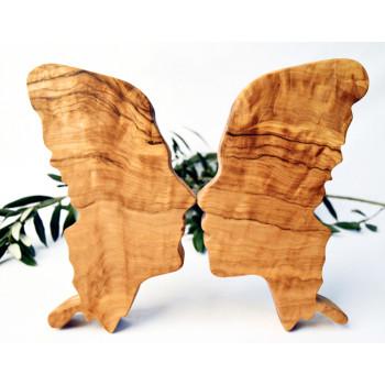 Zeytin Ağacı Kelebek Aşkı...